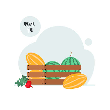 Box with watermelons and melons. The concept of healthy organic food. Vector illustration in a flat style. Isolated on a white background. 向量圖像