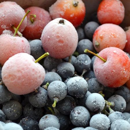 Frozen fruits, apples and grapes. Standard-Bild