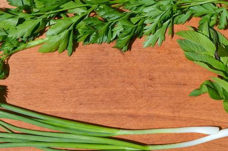 cebollines: Cebollino menta perejil