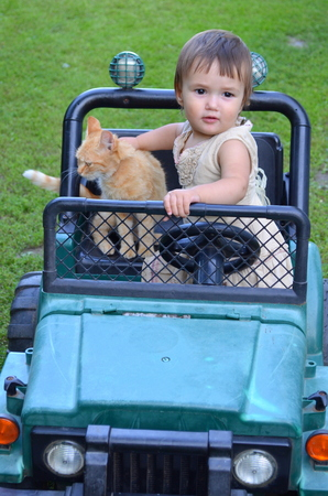 girlie: Little girl with a cat