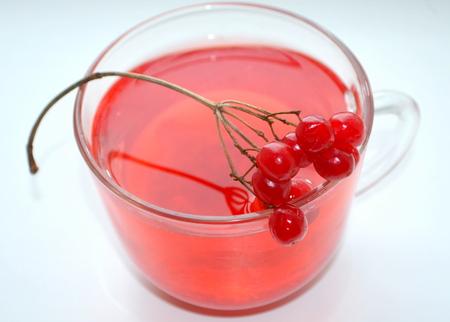 voile: Tea with viburnum Stock Photo