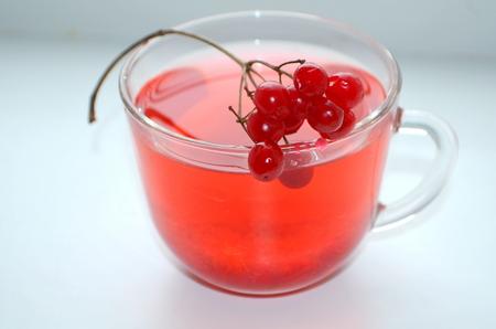 Tea with viburnum Stock Photo