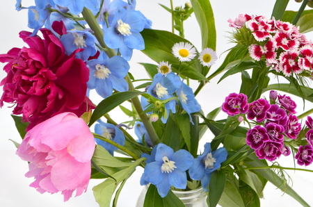 attractiveness: Background with flowers - peonies, carnations, delphinium, daisy
