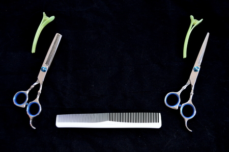 Shears and hair brushes Stock Photo