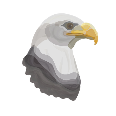 The head of a powerful eagle, represented by transparent spots