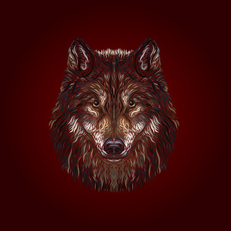 The majestic wolf, painted smooth lines, on a Burgundy background