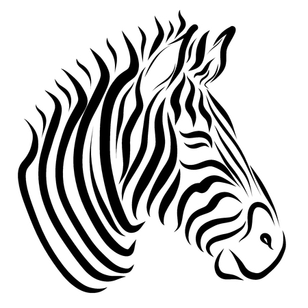 The head of the zebra, painted only with black lines Banque d'images