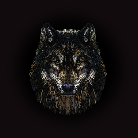 The majestic wolf, painted smooth lines, on a black background 스톡 콘텐츠