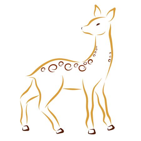 Deer or doe, drawing in smooth lines