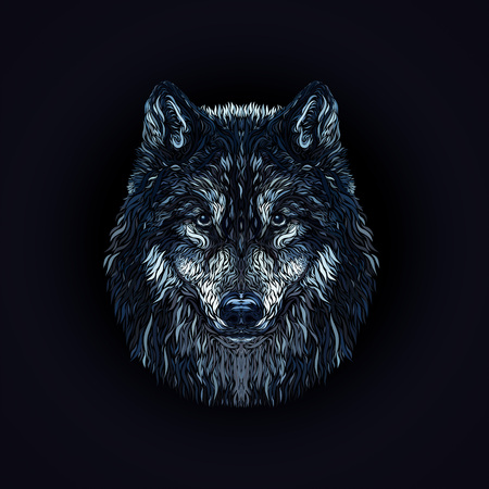 The majestic wolf, painted smooth lines, on a black background