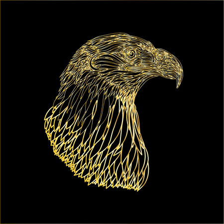 Golden Bird of Prey on a Black Background Stock Photo