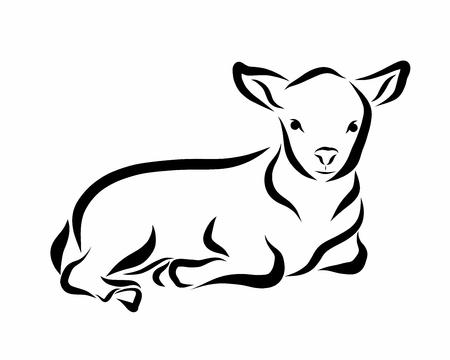Lying lamb, black flowing lines