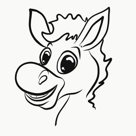 Young cheerful donkey, head, profile
