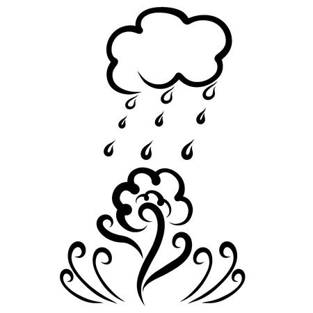 Elegant flower growing under the drops of rain Banco de Imagens