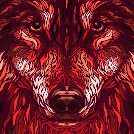 fire wolf or dog head, creative pattern, colorful background