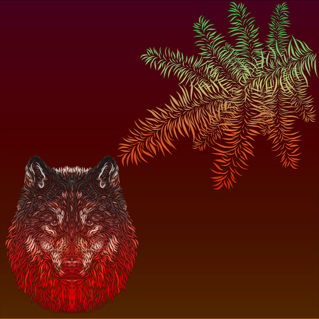 A wolf on a claret background and a branch of a coniferous tree