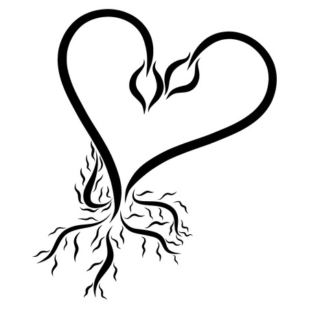 The heart of two young shoots with roots