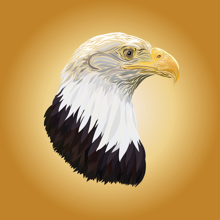 The head of an eagle, drawn in elegant lines, on a yellow background