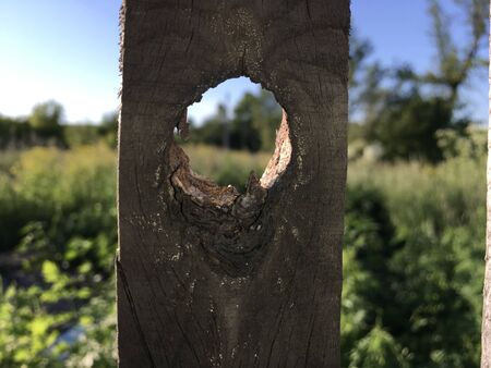 fence peg with a natural hole view of nature