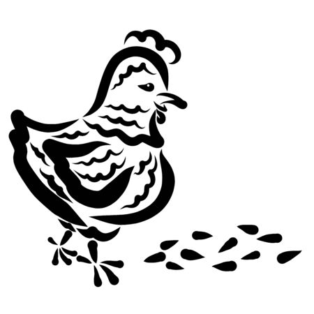 Chicken and grains for food in front of her, black pattern