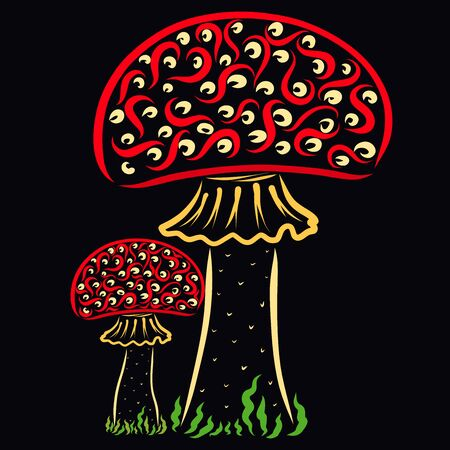 two colorful patterned fly agaric on a black background