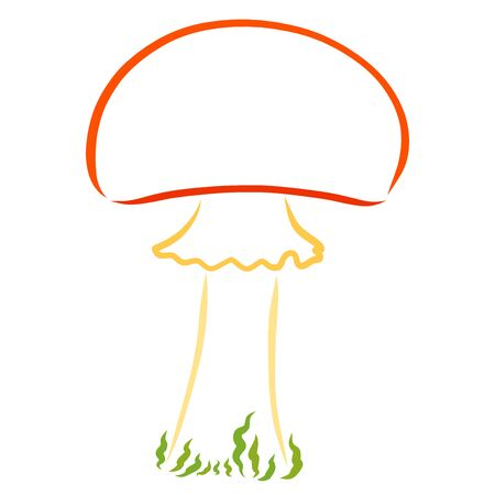 mushroom with an orange cap, colorful outline on a white background