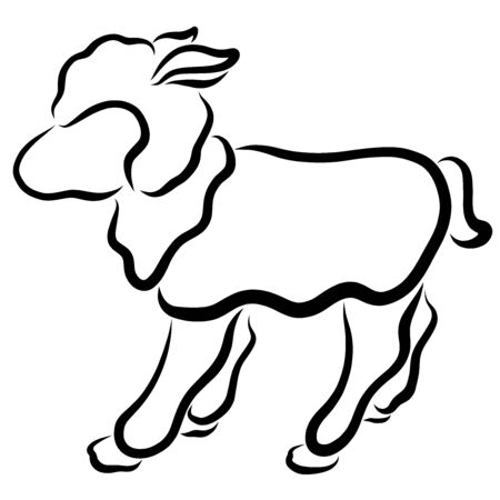 Cute fluffy lamb, black outline on a white background