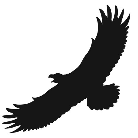 silhouette of a large bird of prey flying with an open beak Imagens