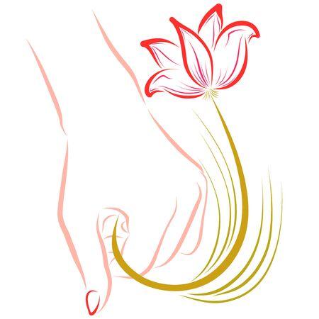 female hand holding a graceful flower, romantic gift 写真素材