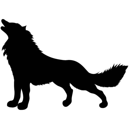 black silhouette of wild animal howling wolf standing with fluffy shaggy tail
