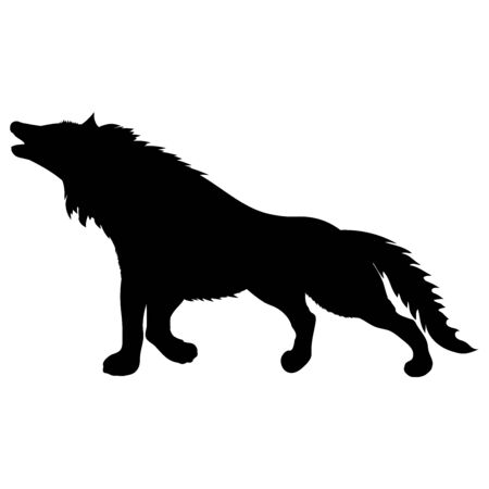 black silhouette of wild animal howling wolf standing with raised paw and fluffy shaggy tail