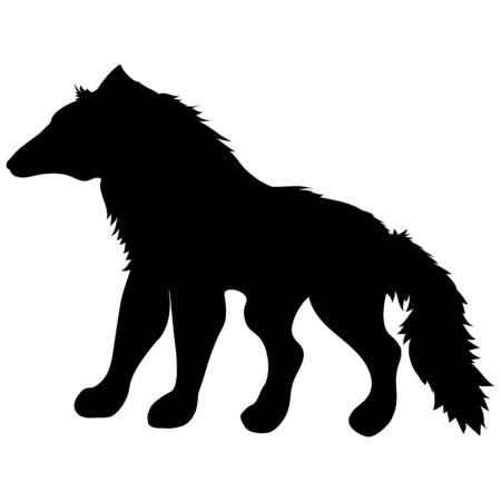 black silhouette of wild animal wolf standing with fluffy shaggy tail 스톡 콘텐츠