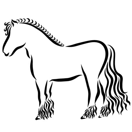 young thoroughbred strong horse, black outline on a white background
