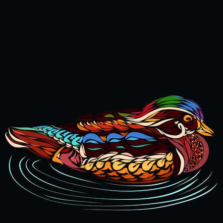 swimming very colorful carolina duck, creative pattern Фото со стока