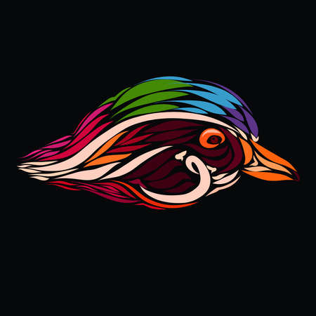 head of a colorful bird on a black background