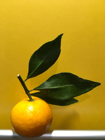 bright citrus tangerine fragrant with leaves Фото со стока