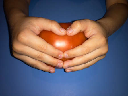 fresh natural tomato holding heart shape in hand