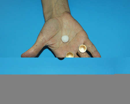 holding a white and two glass transparent balls in the palm