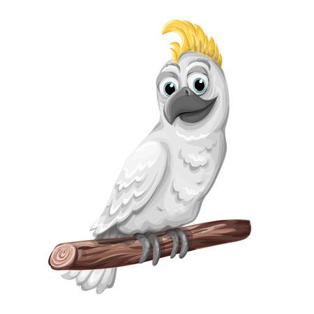 Cockatoo alba bird. Parrot character. Symbol of Australia. Illustration