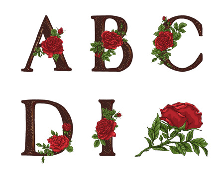 Red Roses letters. Hand draw, Vector alphabet Illustration