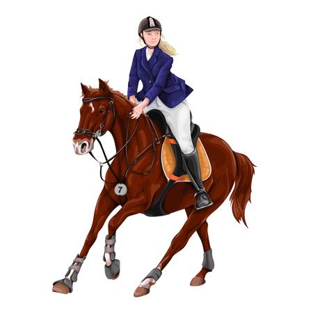 Woman, Girl riding horses Vector Illustration, isolated. Illustration