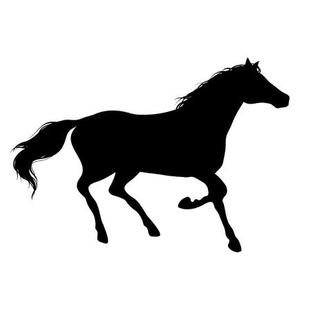 Running horse black silhouette illustration on white background. Illustration