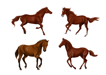 A set of realistic running and jumping beautiful horses.