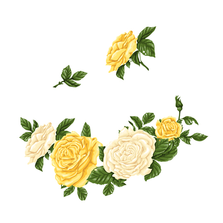 Big set of pink, yellow and red roses, bouquets, flowers and buds. Vector illustration. Illustration
