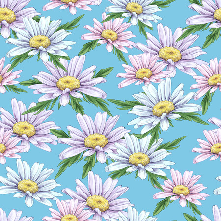 Seamless vector pattern with hand draw daisies.