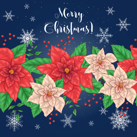 Poinsettia Flowers and Christmas Floral Elements. Vector illustrations 向量圖像