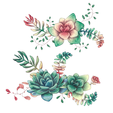Card with cactuses and succulents set. Plants of desert. Vector illustration.