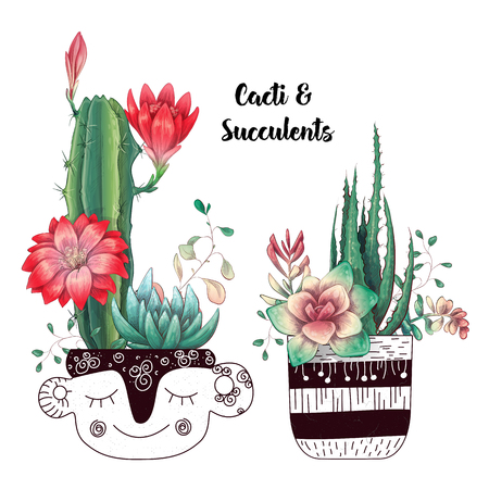 Card with cactuses and succulents set. Plants of desert. Vector illustration. Иллюстрация