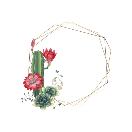 Wedding frame with succulent and cacti. Vector illustration. Иллюстрация