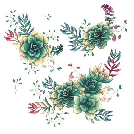 Set of floral succulents compositions in hand draw style. Composition of plant and branches. Vintage elements for invitations, greeting cards, covers and other items. Vector illustration.